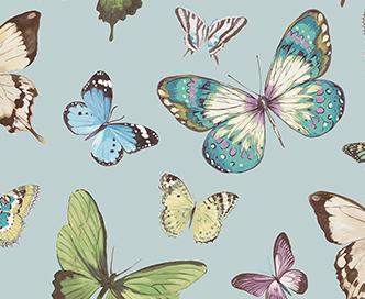 butterfly-aqua-thumbnail