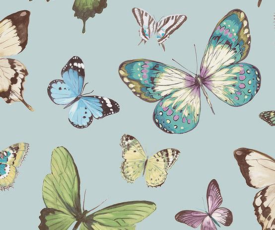 butterfly-aqua