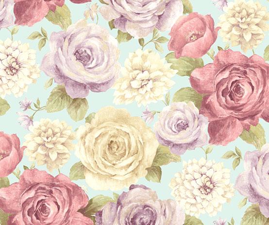 bloom rose blue