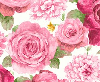 bloom-rose-white-thumbnail