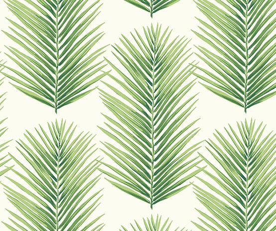 palmera-fern-leafy-greens